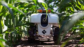 """La combinación de la tecnología y la naturaleza para crear """"robots - plantas"""""""
