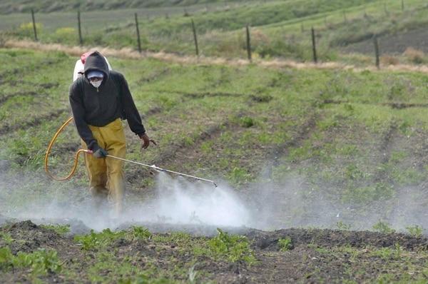 El reglamento sobre uso y venta de plaguicidas en el país sufrirá varios cambios