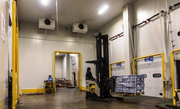 Frionet genera 42 empleos directos en la planta de Ciruelas de Alajuela y 15 en Caldera de Puntarenas. Inició operaciones en el 2010.