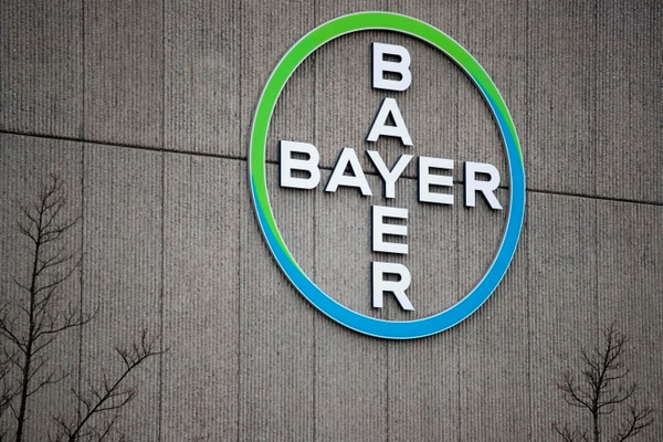 (FILES) In this file photo taken on March 20, 2019, shows the logo of German chemicals and pharmaceuticals giant Bayer on a wall at the group's coumpound in Berlin. - A jury in California on May 13, 2019 ordered Bayer-owned Monsanto to pay more than $2 billion damages to a couple that sued on grounds the weed killer Roundup caused their cancer, lawyers said. (Photo by Odd ANDERSEN / AFP)