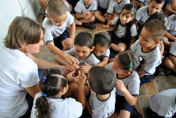 Los escolares que visitan Butterfly Kingdom aprovechan para ver en el laboratorio el proceso de nacimiento de las mariposas.
