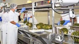 EF Explica: Conozca 'ePhyto', el sistema de certificación fitosanitaria electrónica que implementa Costa Rica