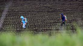 Cientos de plaguicidas esperan aprobación de uso mientras el agro enfrenta días difíciles