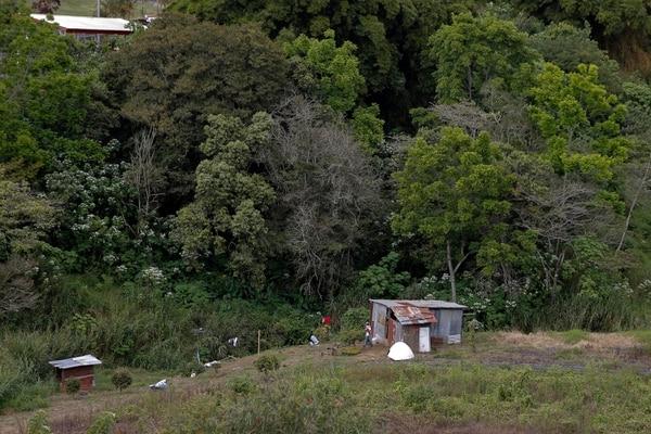 Casa de la familia Hernández Rivas en Salitrillos de Montes de Oca. Viven en un rancho prestado sin agua ni electricidad. Fotografía: Mayela López.