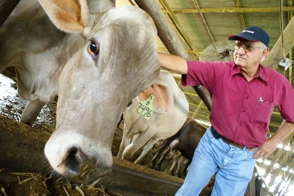 Las cooperativas dedicadas a la agricultura disminuyeron de 52 en el 2008 a 39 en el 2012, según el IV Censo Cooperativo realizado por el Infocoop y el programa Estado de la Nación.