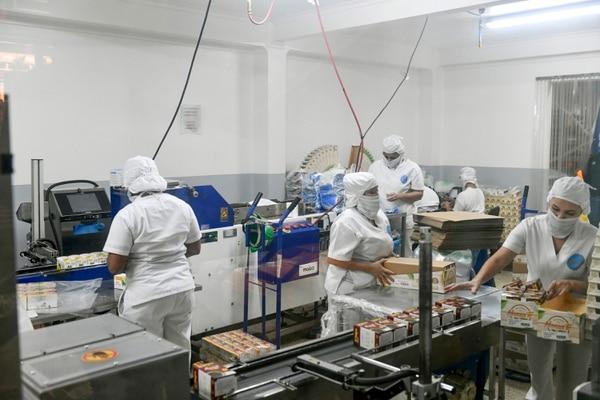 Las líneas de producción de Manza Té trabajan de lunes a viernes, de 7 a. m. a 3 p. m. En la operación de las máquinas el 100% de las colaboradoras son mujeres. Foto: Jorge Castillo