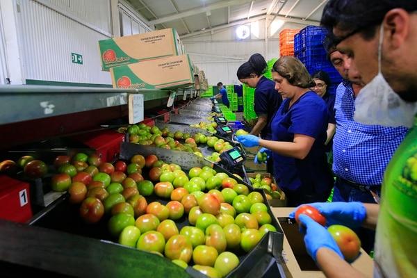 Según los datos emitidos por el Central, en octubre ocho de los diez grupos de actividades económicas crecieron menos que el año previo. Foto: Rafael Pacheco