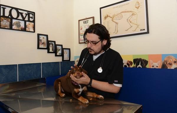 Gustavo Chacón recalcó que otros colegas han optado por la competencia desleal abarantado sus precios, en detrimento de la calidad de la atención que merece el animal y su dueño.