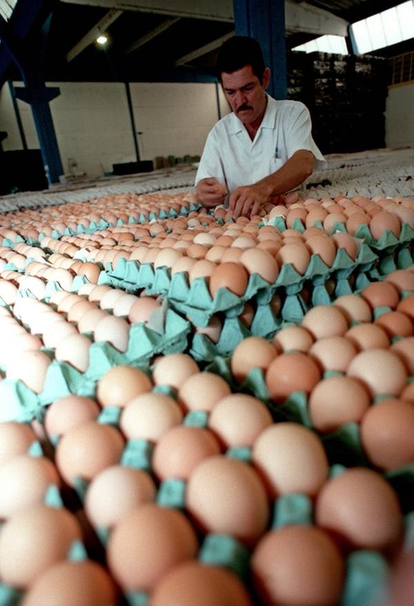 La exportación de huevo de Costa Rica se dirige en su mayoría a Nicaragua y se trata de huevo fértil para incubación.